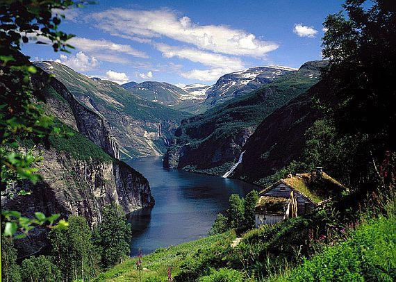 Fordyi norvegii foto