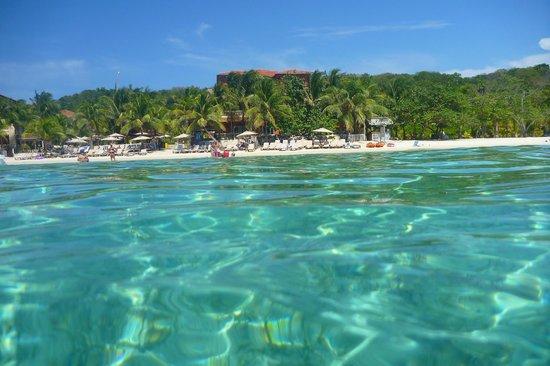 Ostrov roatan